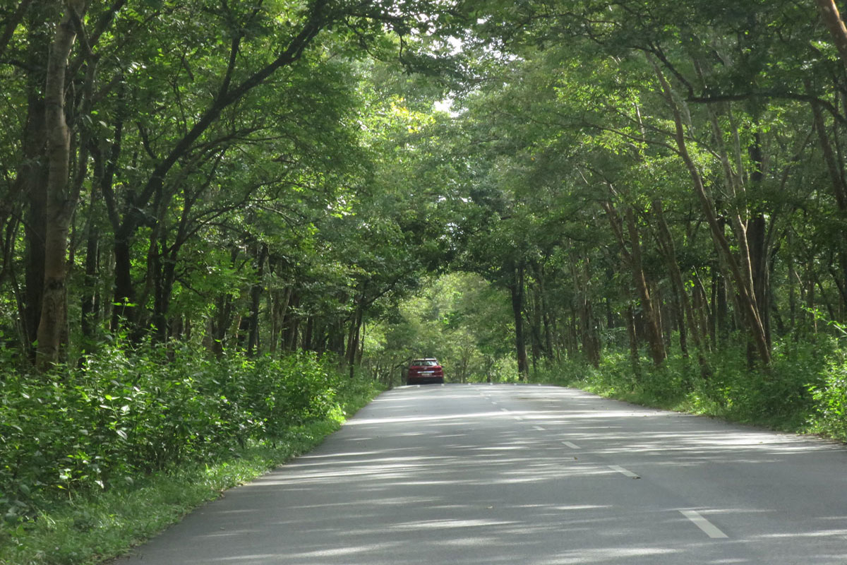 Image of the route to Sundara Mahal
